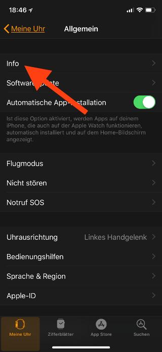 Name der Apple Watch ändern Info auswählen