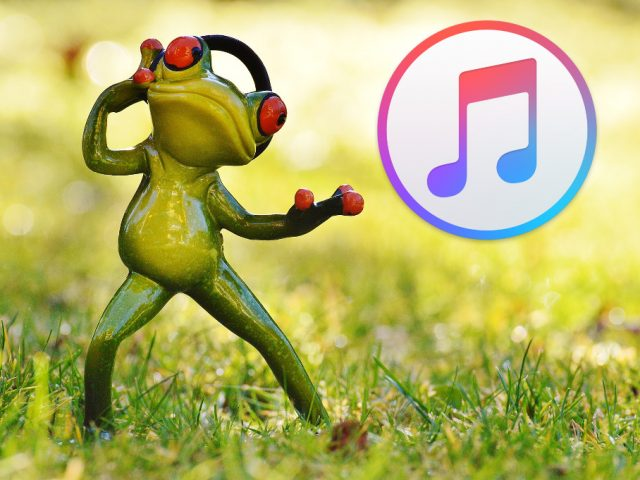 iOS und iPadOS
